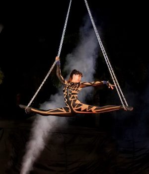 magic-circus-show-25